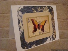 Sentiments Encouragement Butterfly Wings