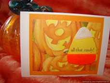 Holidays Halloween All That Candy